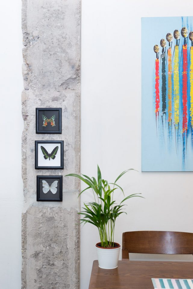 Framed butterflies on the interior wall